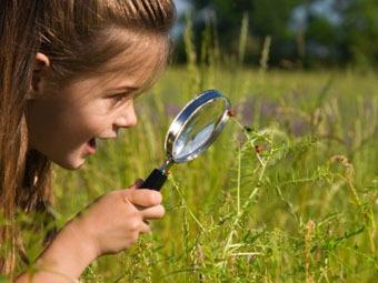 Нашим дети рискуют придти во взрослую жизнь в очках