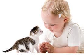 Выбор и покупка маленького друга для вашего ребенка