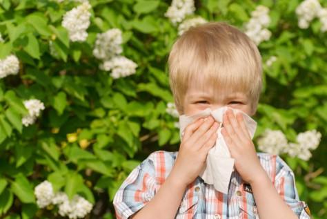 Аллергию у детей не стоит пускать на самотек
