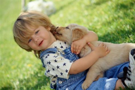 Развить уверенность в себя детям-аутистам помогут домашние питомцы