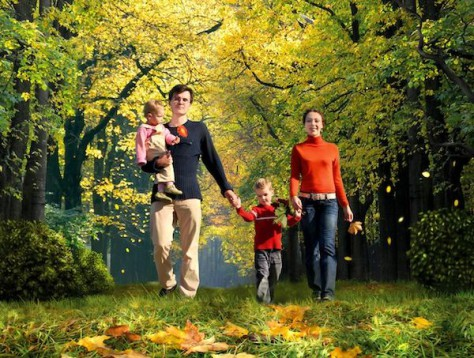 Зеленые насаждения влияют на способности головного мозга детей