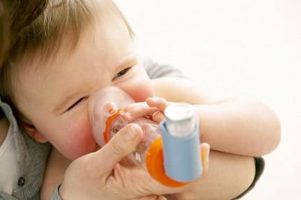 Экспозиция по микрофлоре животноводческих ферм способна нейтрализовать наследственную предрасположенность ребенка к бронхиальной астме