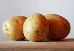 Почему будущим матерям полезно ограничивать потребление картофеля