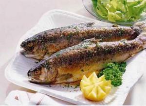 Рыба необходима для развития нервной системы детей
