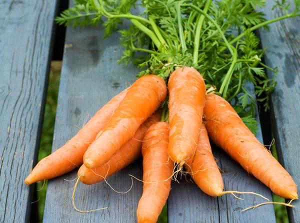 5 фактов о пользе моркови для детей