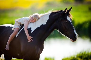 Лошади — секрет повышения успеваемости детей, установили ученые