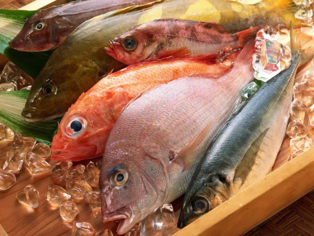 Потребление жирной рыбы во время беременности может предотвращать астму у детей