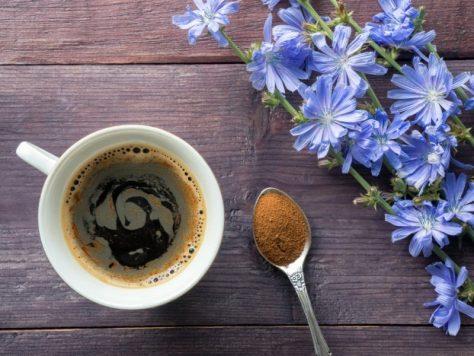 Жизнь без кофеина: цикорий во время беременности