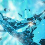 Генная терапия в утробе спасет от неизлечимой болезни