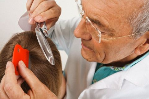Методы лечения головных вшей