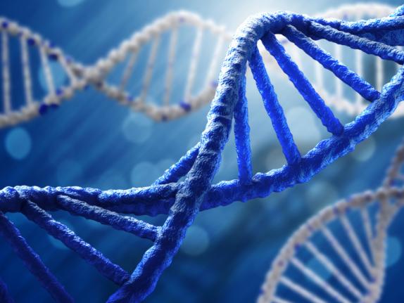 США по-прежнему запрещают генную редактуру детей