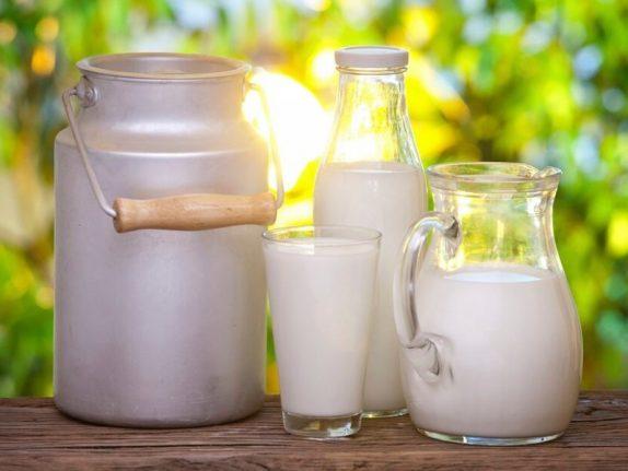 О пользе и вреде молочных продуктов