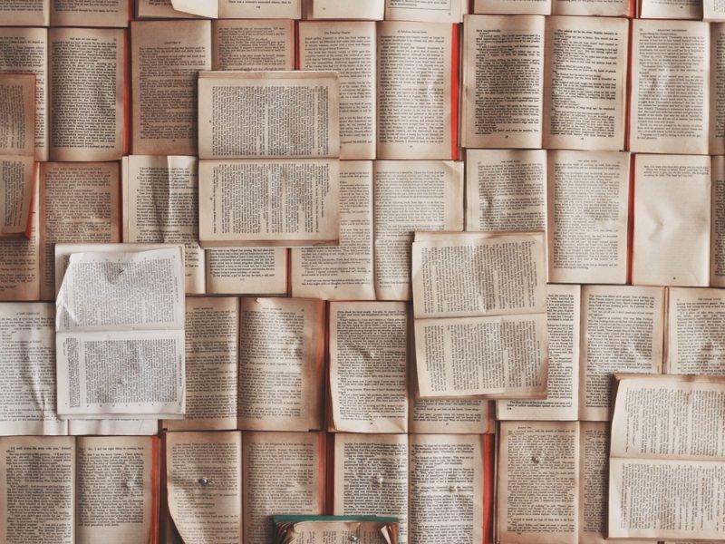 Ученые выяснили, какие книги предпочитают дети