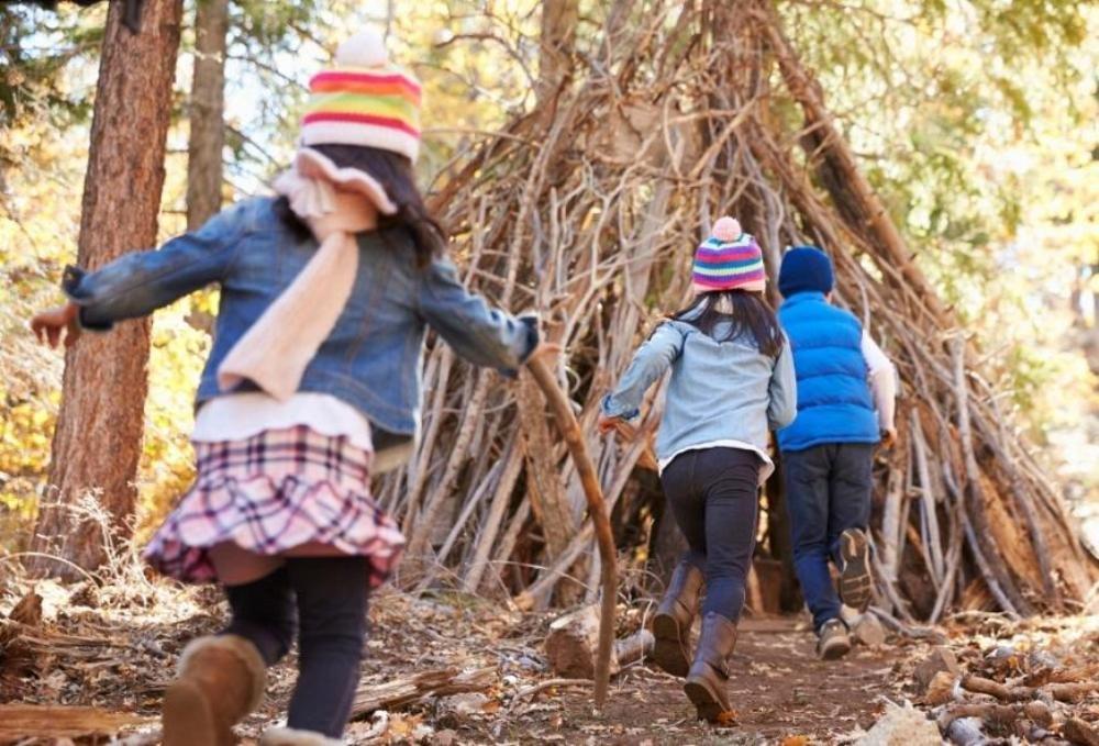 Для развития интеллекта детям нужно жить на природе