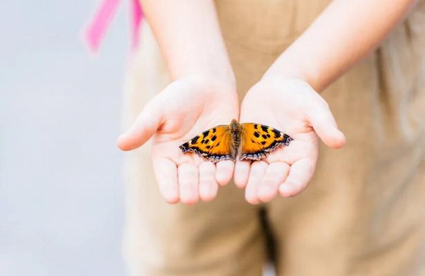 13 фактов о том, как живут дети-бабочки